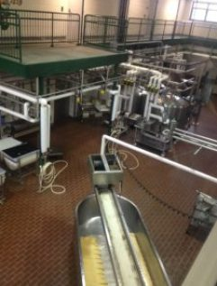 MSU Dairy Plant Facilities today