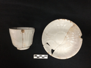 Whiteware from West Circle Privy.