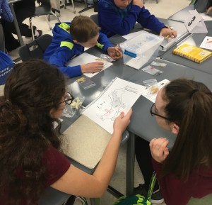 Students discussing artifacts and looking at the site map representing a Maya cave site.