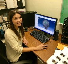 Creating a finite element model of a blunt force impact to a skull. Mari Isa