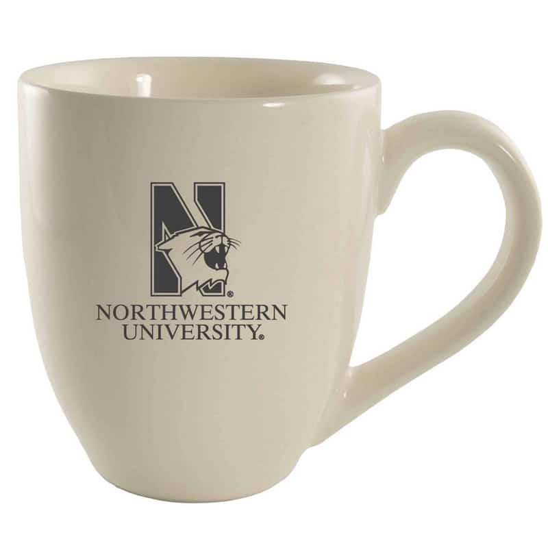 northwestern university wildcats 16
