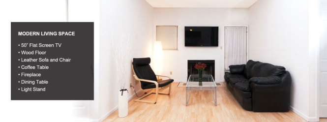 Champaign Urbana Apartment With Parking Fireplace Tv And Laundry