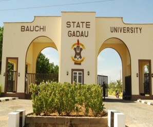 Approved List Of Courses Offered At Bauchi State University, Gadau