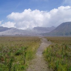 Path to Gunung Bromo