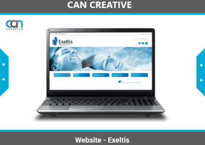 Jasa Pembuatan Website Exeltis