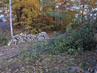 The beginning of the log pile (seasoning)