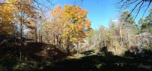 Frontenac Park