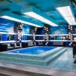 Big Brother Canada 3 - pool
