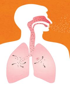 Peut On Mourir Du Cancer De La Langue : mourir, cancer, langue, Radon, Votre, Maison, Canada.ca