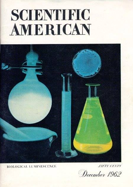My first Scientific American