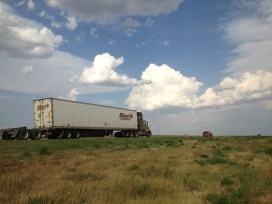 Bison Transport is ubiquitous on the prairies
