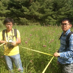 Figure 3: Setting up our quadrat for sampling species in our wetland 图3:在湿地中确定样方以进行物种采样