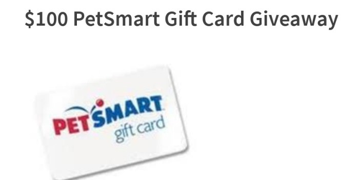 2020 Petsmart Christmas Gift Steamy Kitchen $100 PetSmart Gift Card Giveaway   Enter To Win