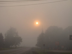 rc_fog.jpg