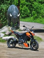 690duke_rhs_buffalo.jpg