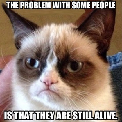 Grumpy Cat strikes again?