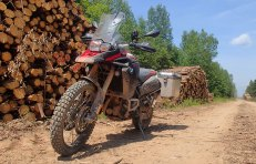 Logging roads! love 'em.