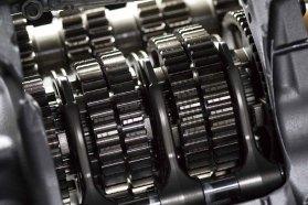 dog-gears