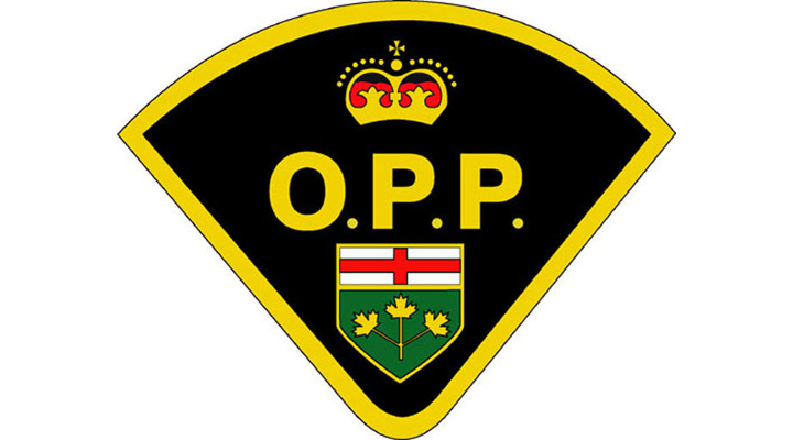 OPP charge 10 motorcyclists in GTA hooligan ride