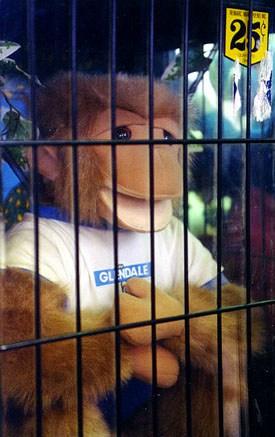 race_evil_monkey