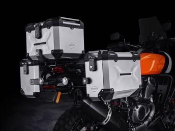 2020 Harley Davidson (11)