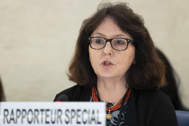 UN violence against women expert