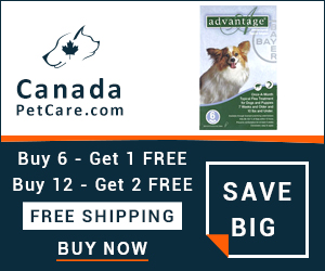 Advantage is a monthly topical treatment for killing and controlling fleas. Buy Now to Get Extra 10% Discount and Free Shipping on All Orders Across USA. Also Avail Free Doses of Advantage with Every Pack.