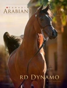 RD Dynamo
