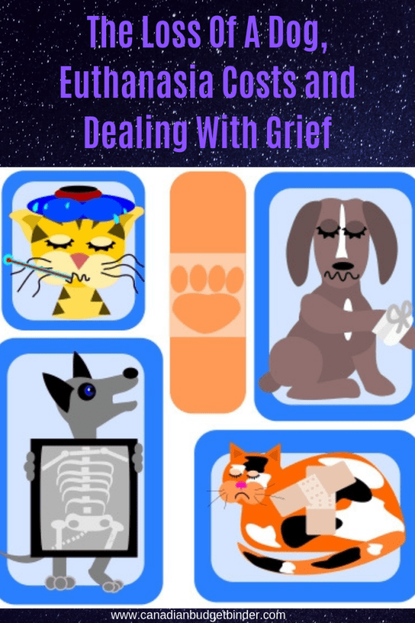 The loss of a dog, euthanasia, costs and how to deal with grief Canada