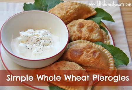 Whole-Wheat-Pierogi