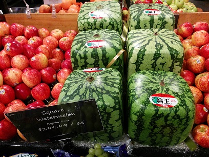 Do summer foods cost you more money the grocery game - Square watermelons how and why ...