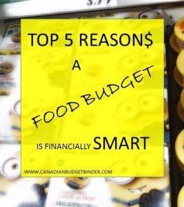 Food budget financially smart(1)