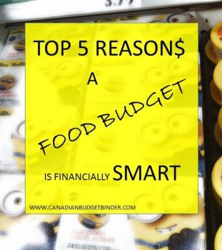 Food budget financially smart(1)