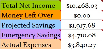 January 2016 Month Income and Expenses