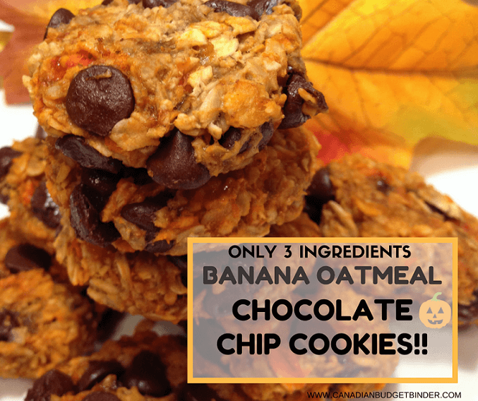 Banana Oatmeal Chocolate Chip Cookies With Only 3 Ingredients ...