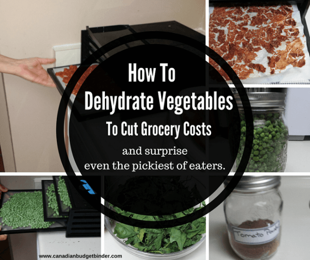how to dehydrate vegetables to cut grocery costs and picky eaters