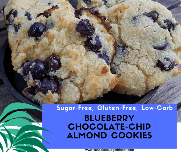 blueberry chocolate chip almond cookies low carb keto .png 1