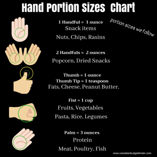 portion sizes we follow using the hand