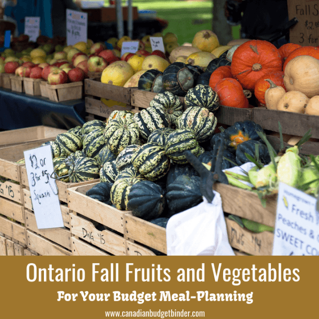 Ontario Fall Fruits and Vegetables for your budget meal planning