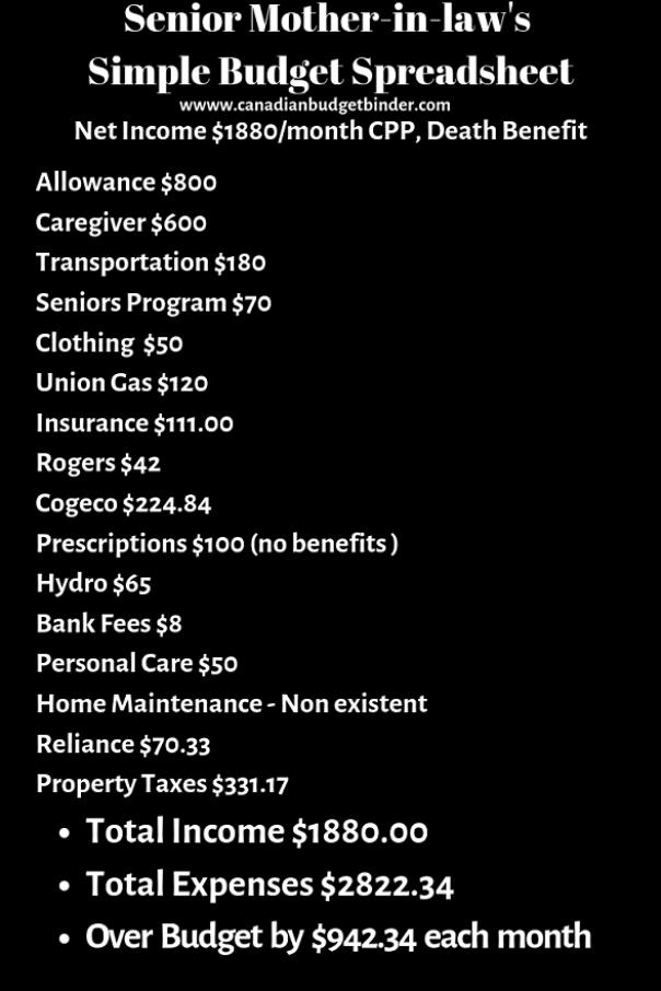 example budget spreadsheet senior