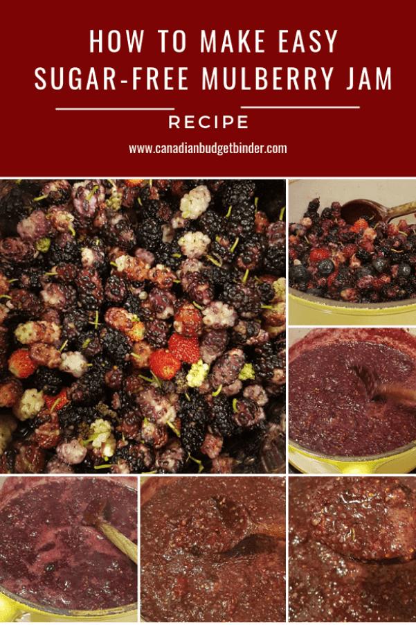 how to make sugar-free mulberry jam