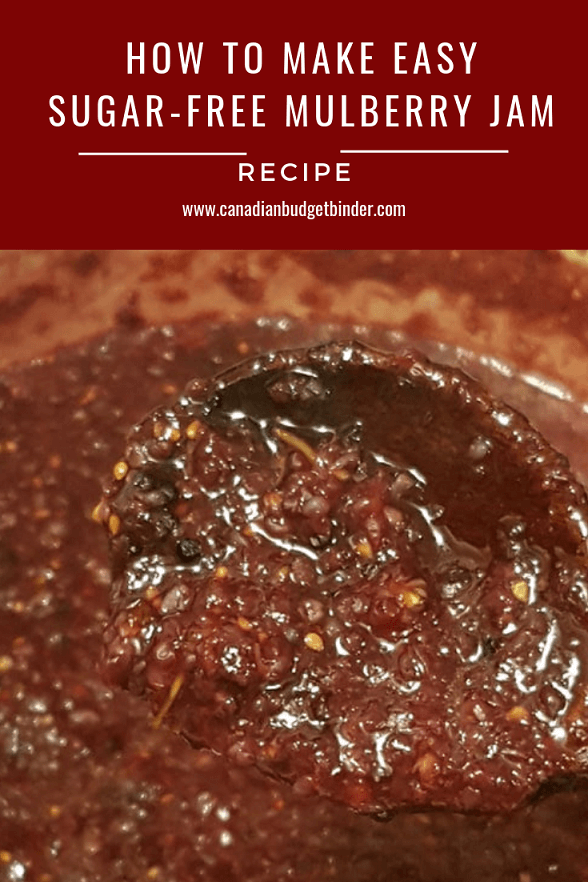 Easy Sugar-Free Mulberry Jam (Keto)