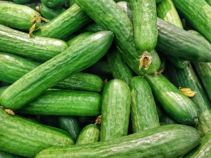 storing cucumbers