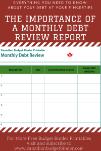 Debt Consolidation Report