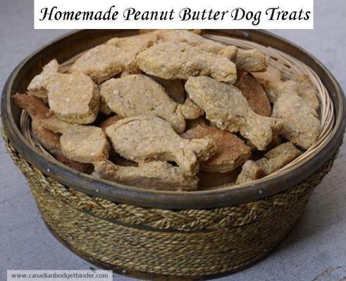 Homemade-peanut-butter-dog-treats-2