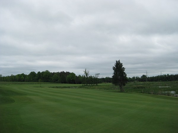 Formerly a par-6, the 11th hole at Black Bear Ridge would benefit from removing the remaining trees along the marsh.