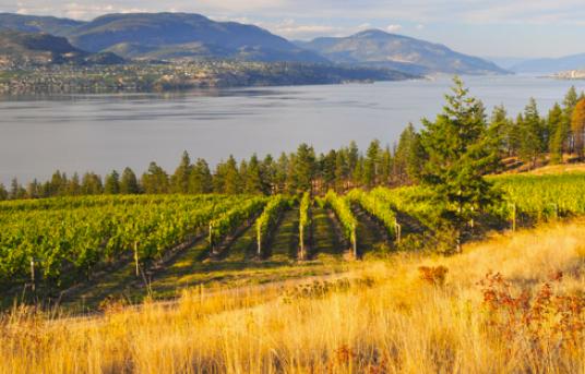 The Thompson-Okanagan region, British Columbia