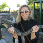 Staring Down a Gator in the Everglades