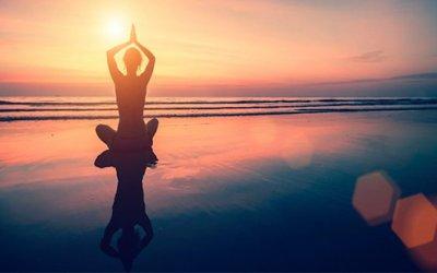 The Seven Pillars of Mindfulness
