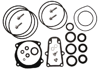 SEAL KIT-LOWER GC E/J#439141